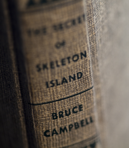 The Secret of Skeleton Island by Bruce Campbell