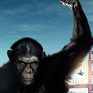 I Double Dog Dare You To Go See Rise Of The Planet Of The Apes!