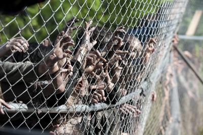 Walkers - The Walking Dead - Season 4, Episode 1 - Photo Credit: Gene Page/AMC