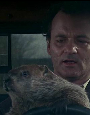 Groundhog Day Screenshot UM80