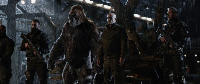 Woody Harrelson standing among a series of apes and soldiers. This is a still from Planet of the Apes.