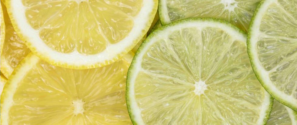 A photograph of sliced lemons and limes.