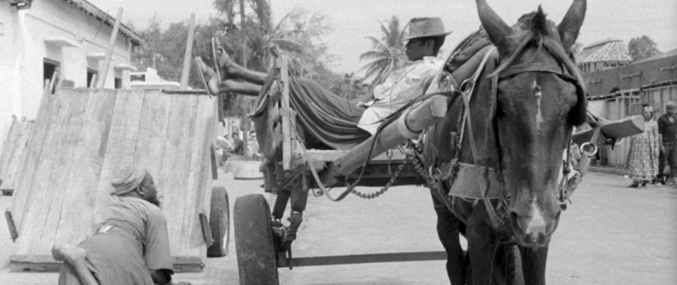 A person reclines on an animal drawn carriage.