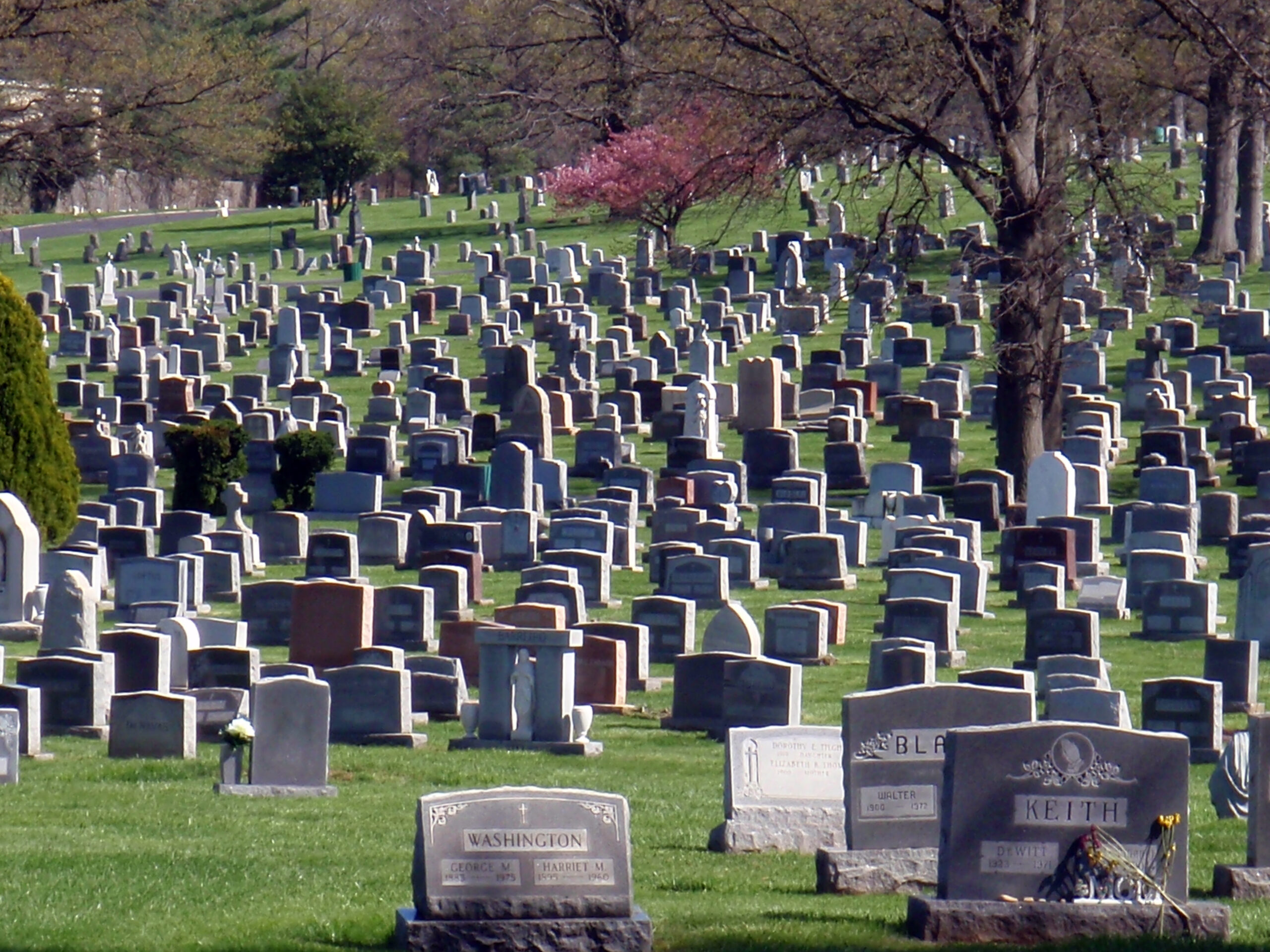 A large, modern cemetery with many headstones.