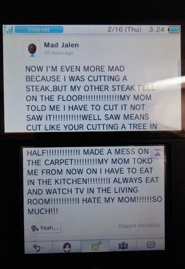"""A comment from the Miiverse (user Mad Jalen) shown on a DS screen. The text reads (in all caps) now I'm even more mad because I was cutting a steak, ut my other streak fell on the floor! My mom told me I have to cut it not saw it! Well saw means cut like your cutting a tree in half! Made  mess on the carpet! My mom tokd me from now on I have to eat in the kitchen! Always eat and watch tv in the living room! Hate my mom! so much! """""""
